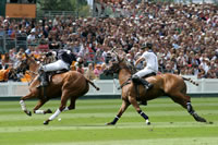 Queens Cup Polo Hospitality at the Guards Club